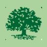Oakham, MA tree